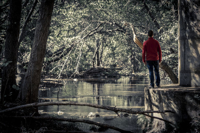 View of man standing on concrete edge in dark park with view of tranquil pond on background Beauty In Nature Branch Casual Clothing Day Forest Full Length Land Men Nature One Person Outdoors Plant Rear View Standing Tree Tree Trunk Trunk Water WoodLand