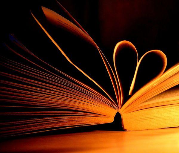 Close-up of illuminated book