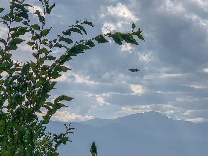 Pikes Peak Jet Airforce Cloud - Sky Sky Mountain Flying Low Angle View Tree Plant Transportation Air Vehicle Airplane Motion No People Mid-air Scenics - Nature Mode Of Transportation Nature Day Outdoors Growth