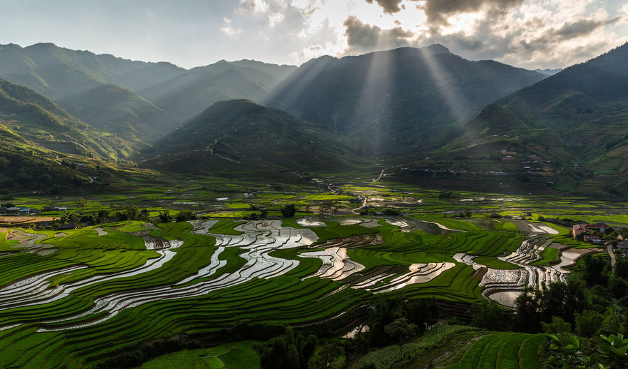 Rice Paddy Rice Terraces Paddy Field North Vietnam Sun Rays Landscape Water Mountains