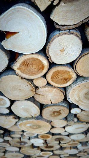 Tree Ring Stack