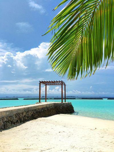 Tropical Paradise Sky EyeEmNewHere Ocean Nopeple Waves EyeEm Nature Lover Beach Tropical Paradise
