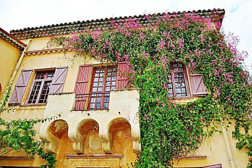 My Best Photo 2015 Provence Côte D'Azur Menton Jardinbotanique Jardins Rameh Menton Jardins Rameh Old House Vielle Maison