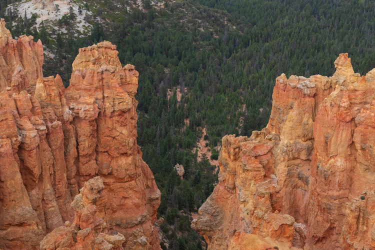 the overwhelming Bryce Canyon Rock Rock - Object Non-urban Scene Nature Beauty In Nature Travel Destinations No People Scenics - Nature Tranquility Tranquil Scene Outdoors Eroded Formation Bryce Canyon Utah National Park Rock Formation Solid Tree Land Travel Plant Canyon Geology Mountain