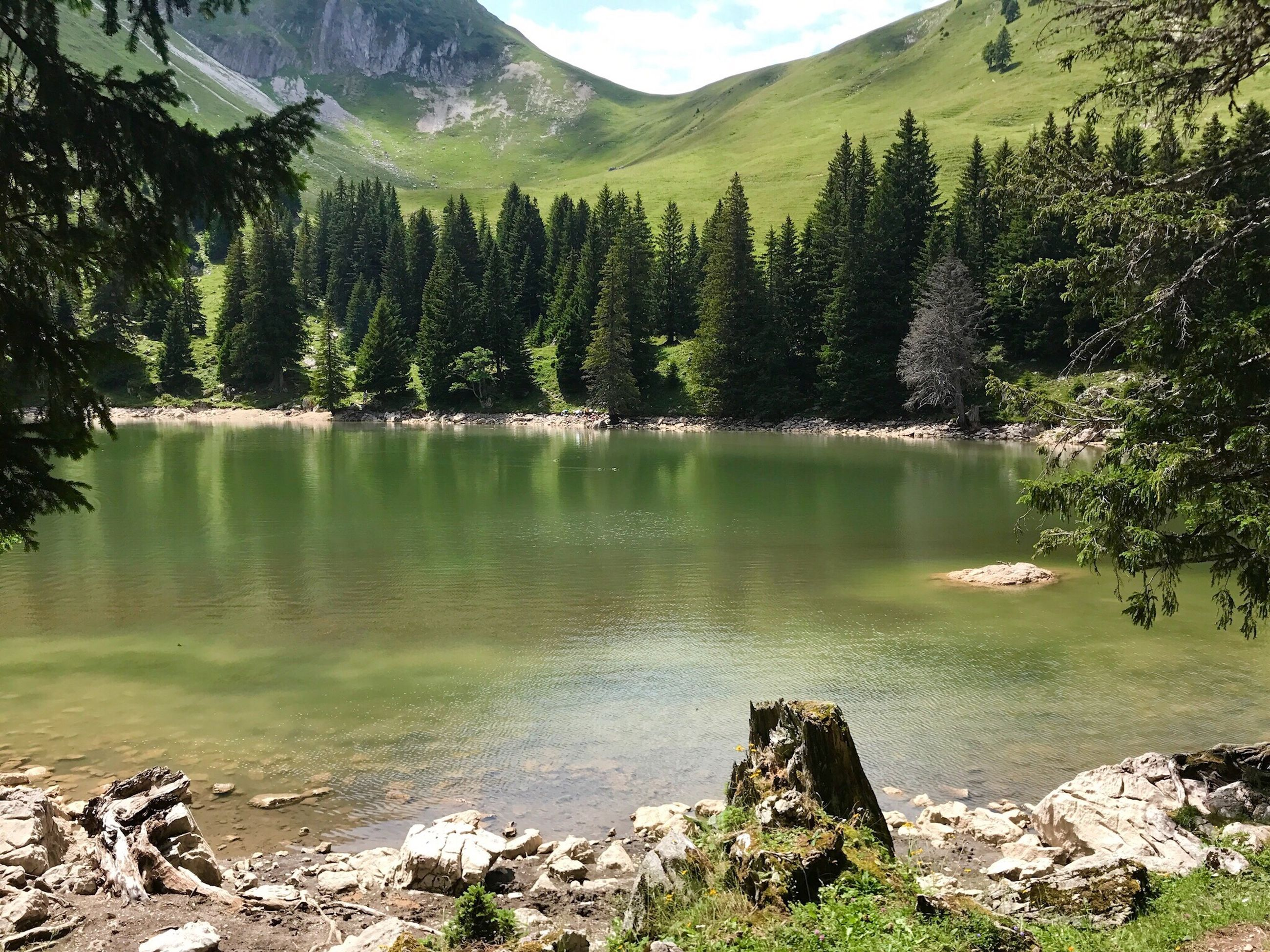 tree, nature, mountain, reflection, beauty in nature, lake, water, forest, tranquility, no people, scenics, outdoors, scenery, day, sky