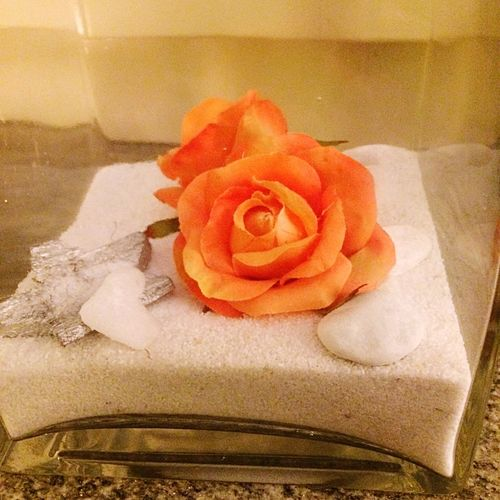 Rosa del deserto