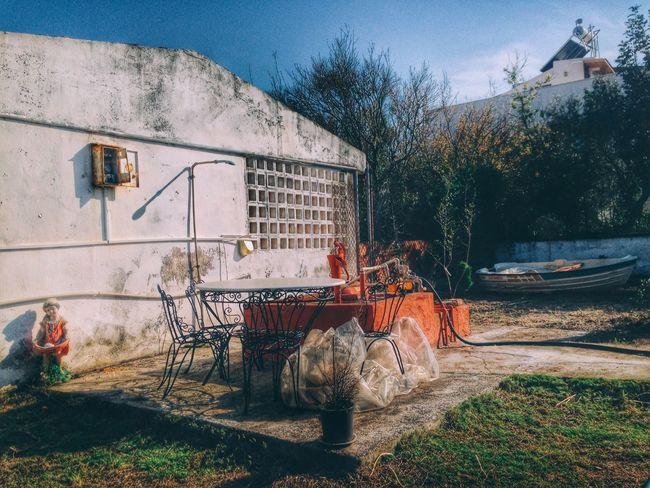 Garden Flowers,Plants & Garden EyeEm Nature Lover EyeEm Enjoying Life Taking Photos Relaxing Green Blue Sky Escaping