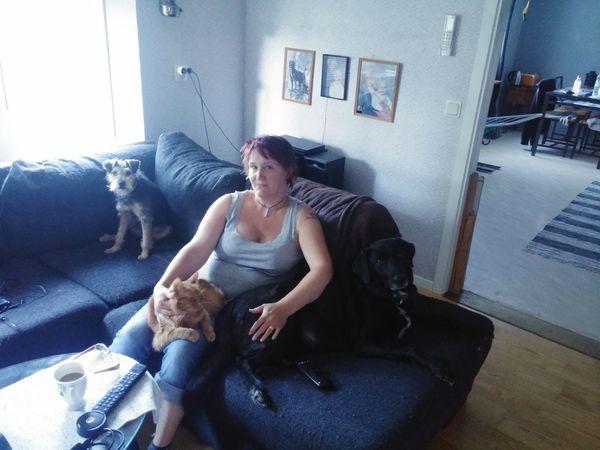 That's Me Cute Pets Mycat♥ Mydogs