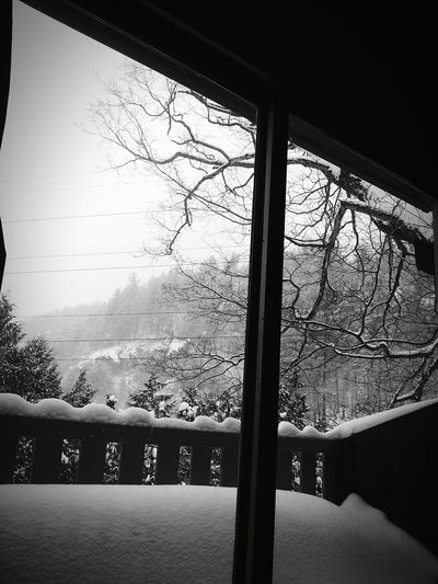 How's The Weather Today? Outside My Window It's Snowing !