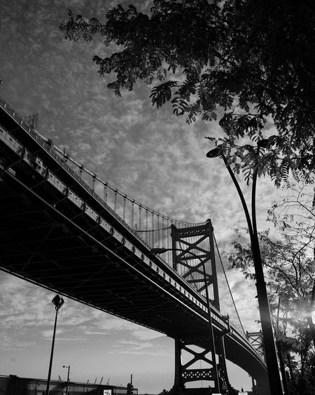 Amazing clouds on a beautiful November Election day morning Sky Tree Low Angle View Built Structure Outdoors Architecture Bridge - Man Made Structure Cloud - Sky Connection No People Day Nature Shadow And Light Play Black And White Photography Benjamin Franklin Bridge  Philadelphia