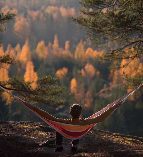 Woods Happiness Spectacular View Relaxing Autumn Camping Hammock Hiking Non-urban Scene Men Growth Outdoors Sitting Tranquility Beauty In Nature Forest Land Day Lifestyles Plant Nature Rear View Tree EyeEmNewHere