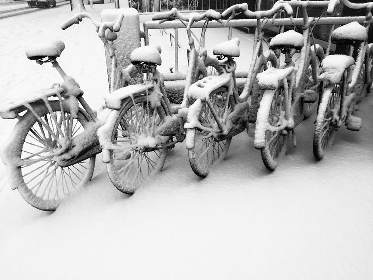 Holland Winter Snow No People Large Group Of Objects Transportation Bicycle Day Outdoors Close-up
