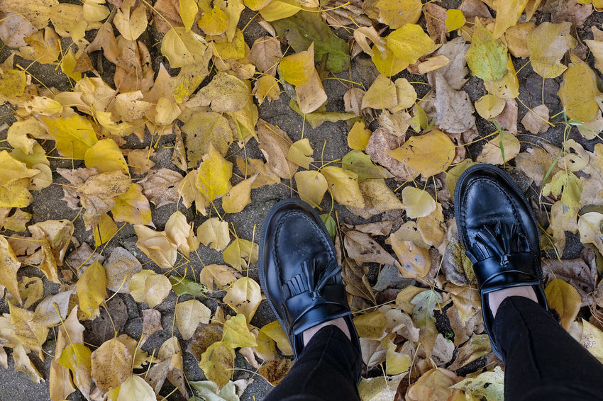 Adult Autumn Day Human Body Part Human Leg Leaf Leisure Activity Lifestyles Low Section Men One Person Outdoors People Personal Perspective Real People Shoe Standing Yellow