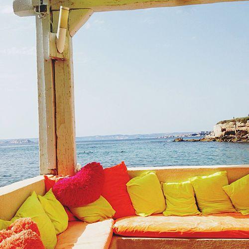 Abricotier Marseille Mer