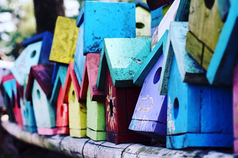 Close-up of colorful birdhouses