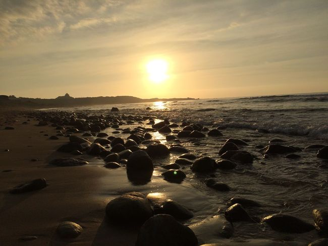 希望還是失落 Sea Beach Water Land Sunset Scenics - Nature Beauty In Nature Nature Orange Color Outdoors