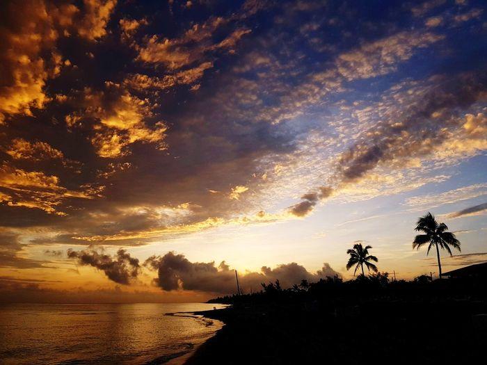 Amanecer Varadero 31años Cuba #VaraderoCuba Tree Palm Tree Beach Sea Silhouette Water Coconut Sky Landscape