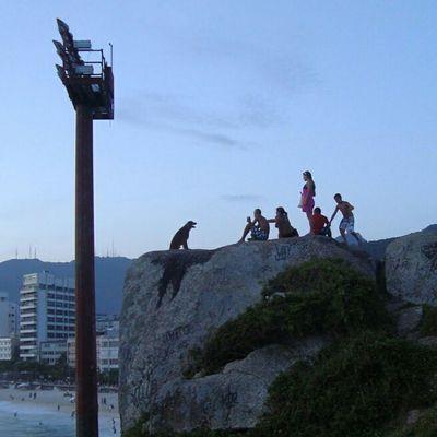 Pedra Do Arpoador Riodejaneiro Brasil