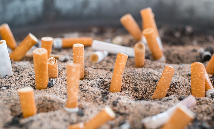 cigarette butts in the sand Cigarette Butts In The Sand Cigarette  Close-up Bad Habit Cigarette  Smoking Issues Sign Cigarette Butt Warning Sign No People Social Issues Tobacco Product Selective Focus Communication Ash RISK Food Burnt Food And Drink Orange Color My Best Photo