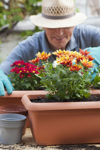 Midsection of man holding flowers in potted plant