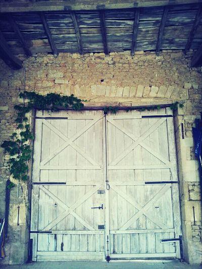 Wood Vintage Doors