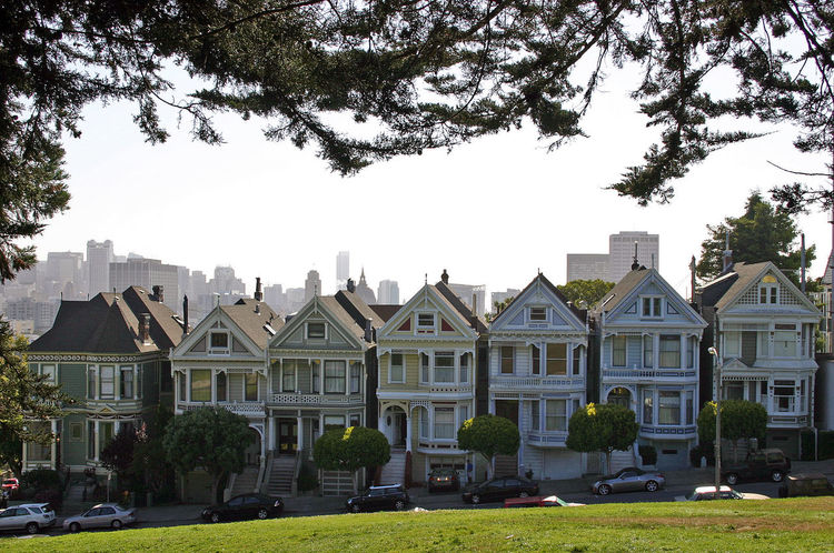 Architecture Building Exterior Built Structure Day Grass House Facades No People Outdoors Painted Ladies Painted Ladies San Francisco Sky Tree