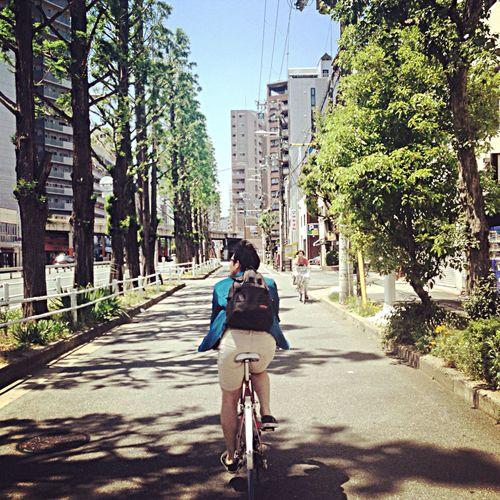 爽やかー Sunshine Cycling Refreshing Relax