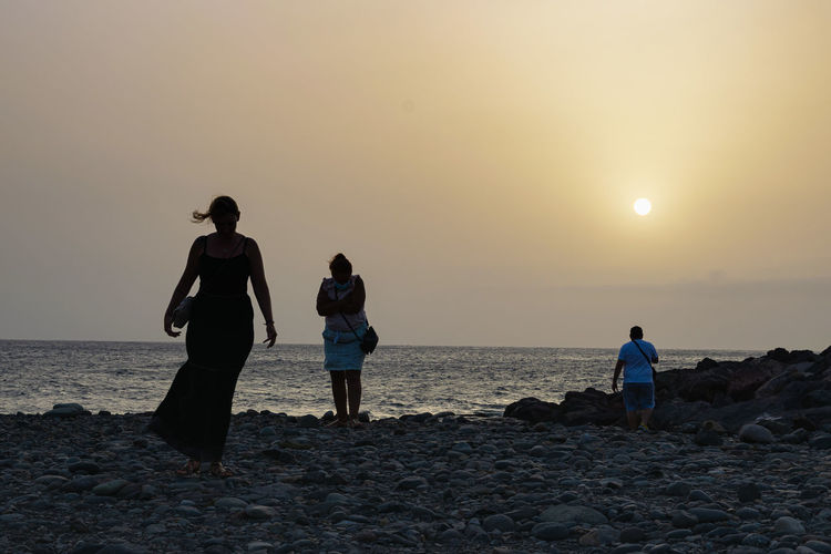 Rear view of people on beach against sky during sunset
