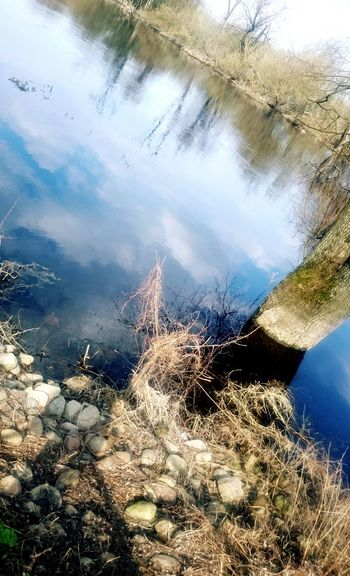 Beautiful Nature First Eyem Photo TheBeginningOfSomethingGreat No People Sky Outdoors Day Water Lake Floating On Water Reflection Tree Nature Close-up Cloud - Sky Beauty In Nature First Eyeem Photo