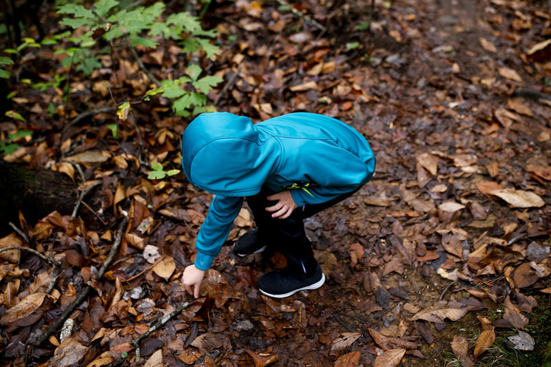 Child Hiking in the Woods Picking Up Sticks One Person Leaf Land Real People Full Length Nature Leisure Activity Autumn Forest Day High Angle View Casual Clothing Outdoors Leaves Obscured Face Autumn colors Autumn Leaves Fall Fall Beauty Fall Colors Boy Hiking Nature Hike Nature_collection Nature Walk