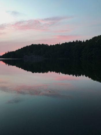 Reflection Tranquility Lake No People Landscape Stockholm, Sweden Pink Color Pink
