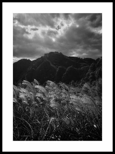 Cloud - Sky Sky Mountain Transfer Print Auto Post Production Filter No People Plant Nature Landscape Environment Tree Day Scenics - Nature Tranquil Scene Tranquility Beauty In Nature Architecture Land Built Structure Outdoors
