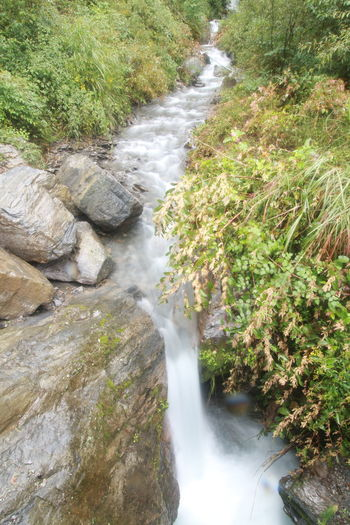 Stream @Taiwan Beauty In Nature