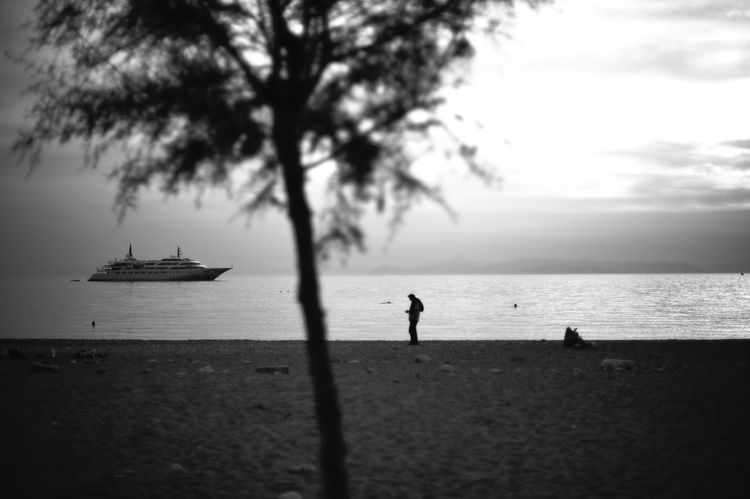 tree on a beach Athens Sea Beach Water Tree Silhouette Day Romantic Tranquility Greece Monochrome Horizon Mediterranean  Griechenland Mittelmeer Tranquil Scene Nautical Vessel Horizon Over Water Streetphotography