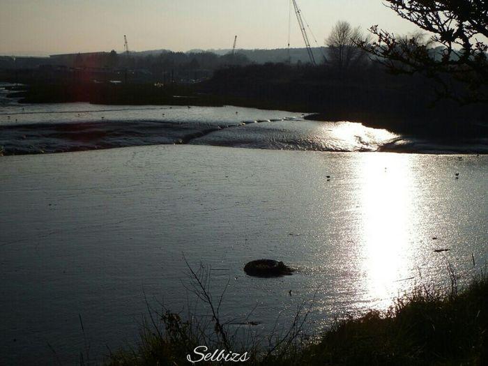 Relaxing Taking Photos Riverside Low Tide Sunset