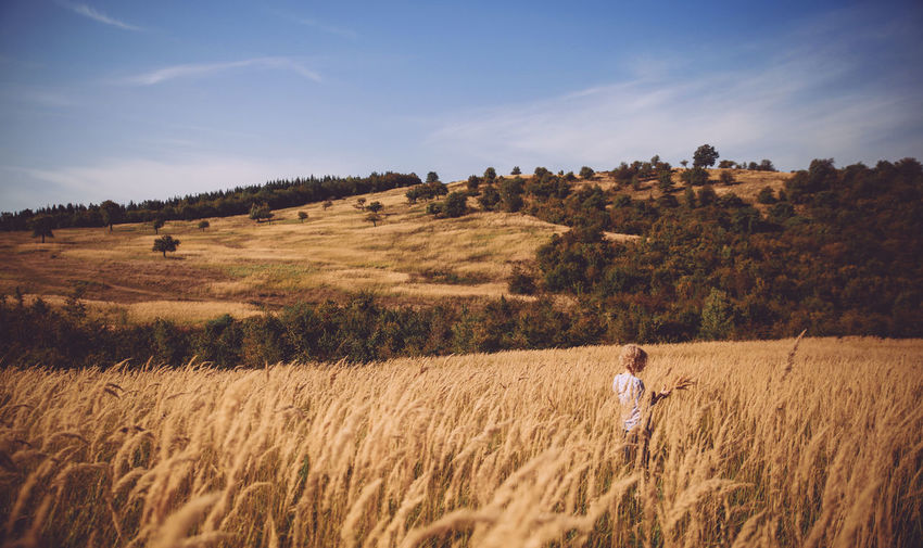 Rear view of woman in wheat field against sky