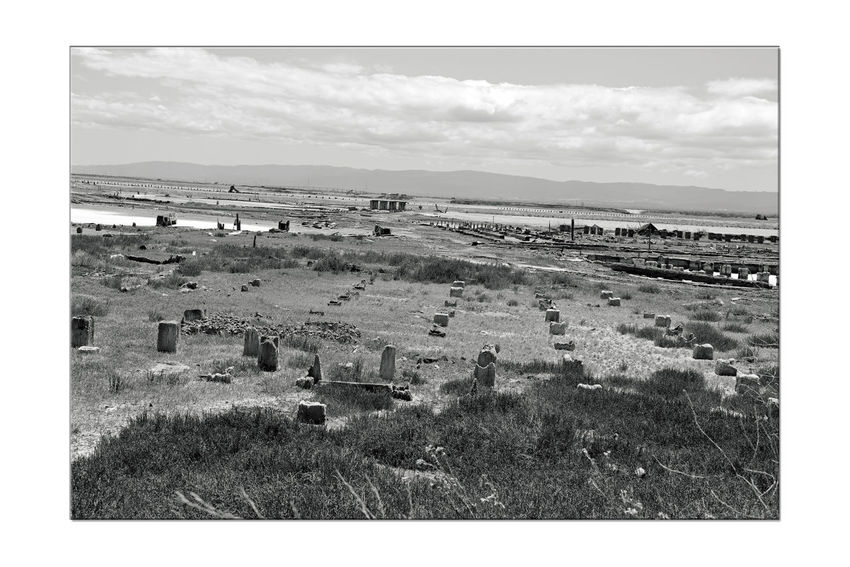 Ruins Of A Salt Company 1 Hayward, Ca. Bnw_friday_eyeemchallenge Days Gone By Andrew August Ohleson Came To Mt.Eden 1868 Changed Name To Oliver & Founded 1872 Oliver Salt Company 4 Generations Managed Production Facilities Solar Evaporation Method Eden Landing Ecological Reserve Nature Marsh Tidal Wetlands Natural Habitat Pilings South Bay Salt Ponds Restoration Project Monochrome Photograhy Monochrome Ruins Black & White Black & White Photography Black And White Photography Black And White Last Oliver Salt Ponds Closed 1982 Mt. Eden Annexed By Hayward Late 1950's