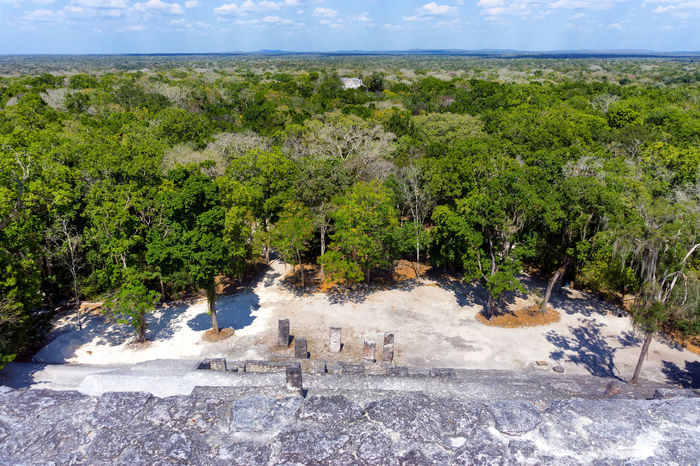 Ruins of Calakmul in Campeche, Mexico Ancient Archeology Calakmul Campeche Mayan Mayan Ruins Mexico Pyramid Ruins Travel Archaeological Archaeological Sites Building Civilization Forest Landmark Maya Mexican Old Site Stone Structure Temple Tourism Tropical