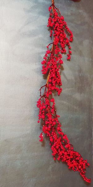 Ilex Decoration Red No People Christmas Christmas Decoration Decoration Plant christmas tree Celebration Nature Christmas Ornament Indoors