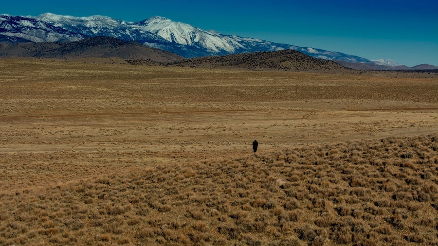 A small person compared to the wide open high desert in Nevada, USA Open Space Wide Angle Scale  Unidentified Person Proportion Smallness Nothingness Small Person USA Nevada High Desert Douglas County