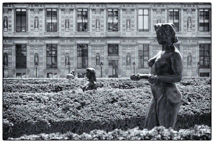 Statue by plants at park against building