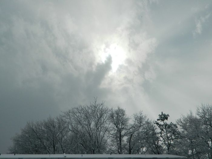 late winter storm Winter Taking Photos Streamzoofamily Taking Photos EyeEm Nature Lover EyeEm Best Shots 100percentmine Tadaa Community Eye4photography  Natures B&w