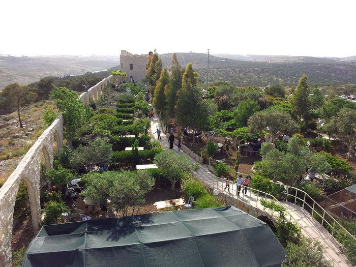 Al-Mintar Al-Mintar High Angle View Landscape Nature Outdoors Plant Scenics Tree Tulkarm Winding Road