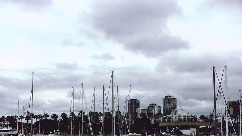 Longbeach California Harborside IPhoneography Oceanview Boatmasts