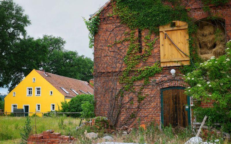 Yellow Yellow House  Countryside Brickhouse Farm Farmlife Farmlandscape Thefarmlife Efeu