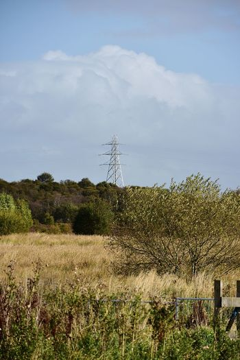 Taking Photos Electricity Pylon Landscape Cloud - Sky Sunnyday Nikon D5500