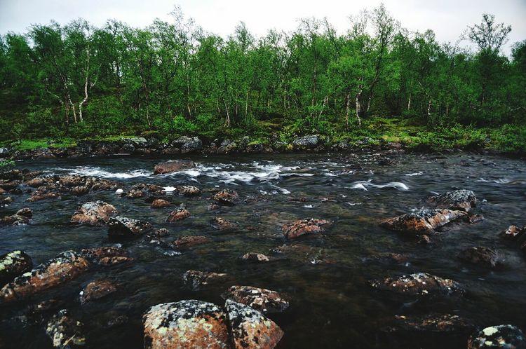 кольский полуостров уприродынетплохойпогоды шум воды север чистый воздух