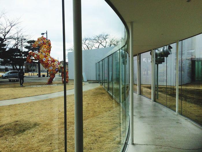 Architecture Museum 西沢立衛 十和田美術館 Aomori,japan