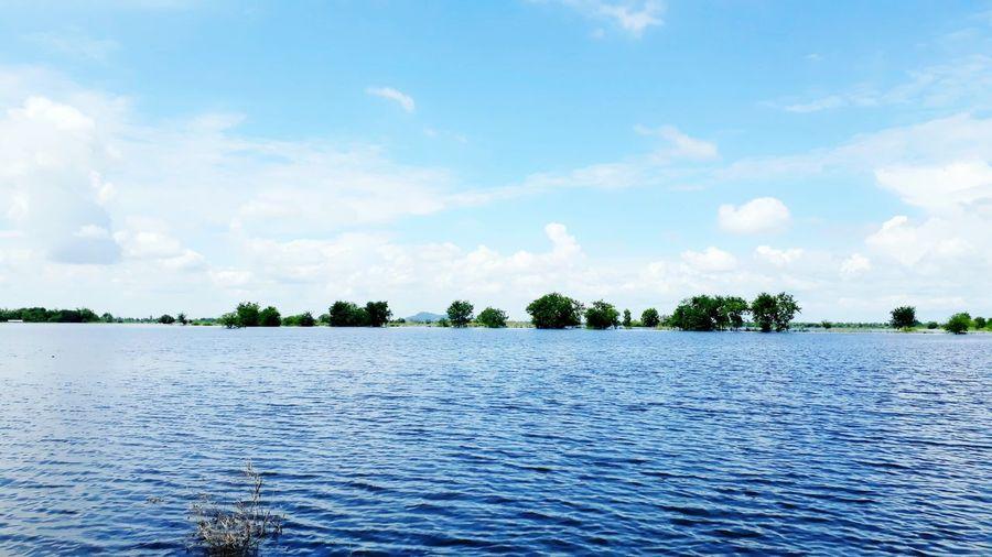 โลกนี้ไม่มีน้ำ....จะเป็นอย่างไร.!? Water Lake Tranquility Blue Tree Nature Sky