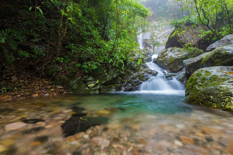 One of the numerous waterfalls tucked away deep in the forests of Meghalaya Water Forest Flowing Water Scenics - Nature Beauty In Nature Long Exposure Motion Blurred Motion Waterfall Nature No People Environment Flowing Rainforest Outdoors Stream - Flowing Water India Meghalaya Nongriat